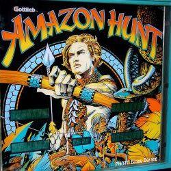 Flipper Amazon hunt